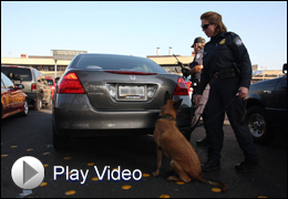 Law enforcement K9 inspects vehicles (Play Video)