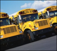 photo of school buses