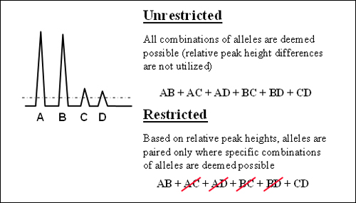 "Illustration of ""restricted"" versus ""unrestricted"" approaches based on relative peak heights (using an assumption of two donors with all peaks above the stochastic threshold)."